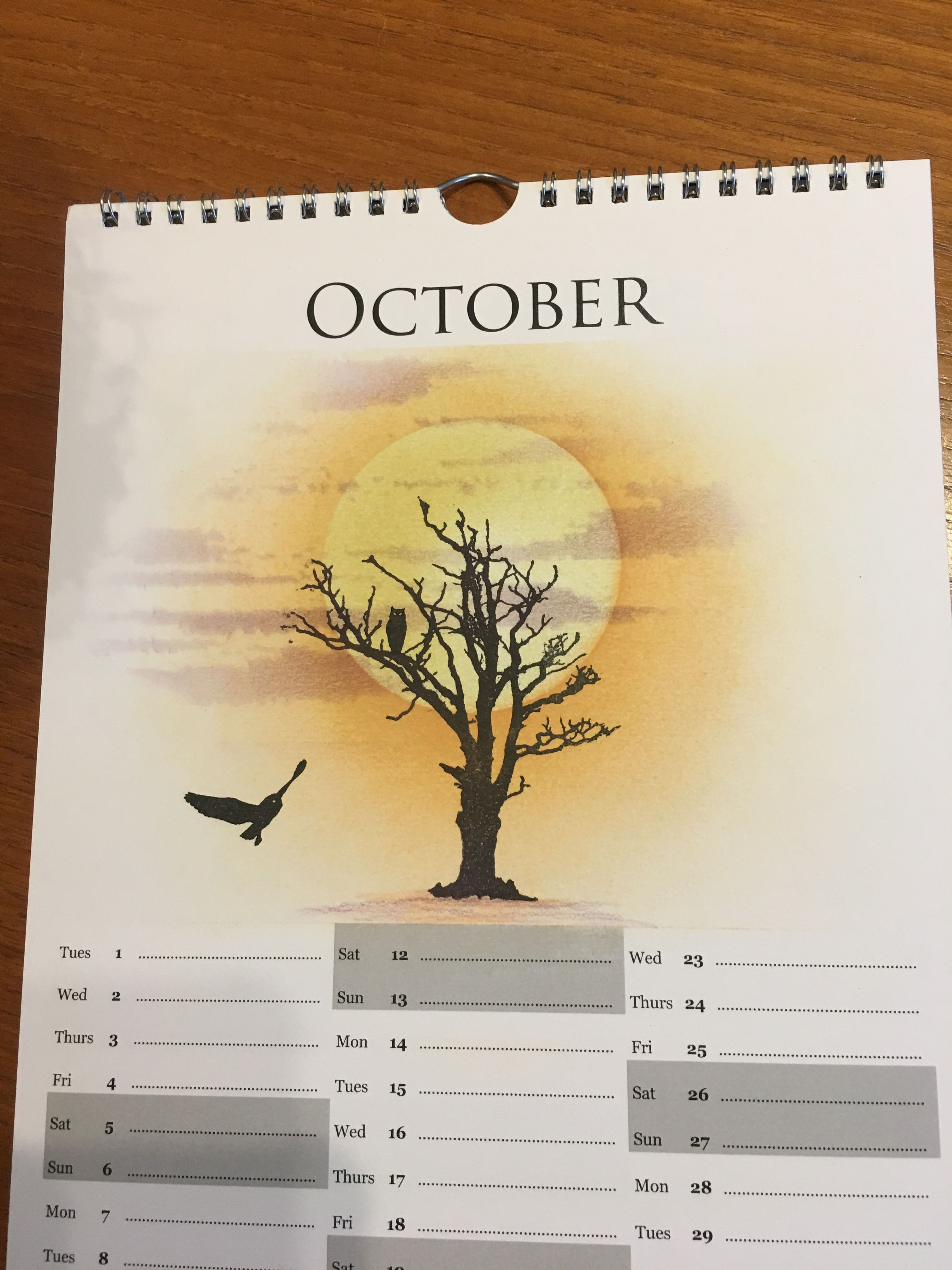 Calendar, 2019 Calendar, Calendar Pages