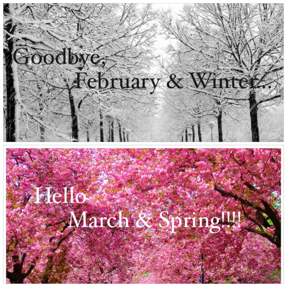 Goodbye February & Winterhello March & Spring!!!! #winter #spring