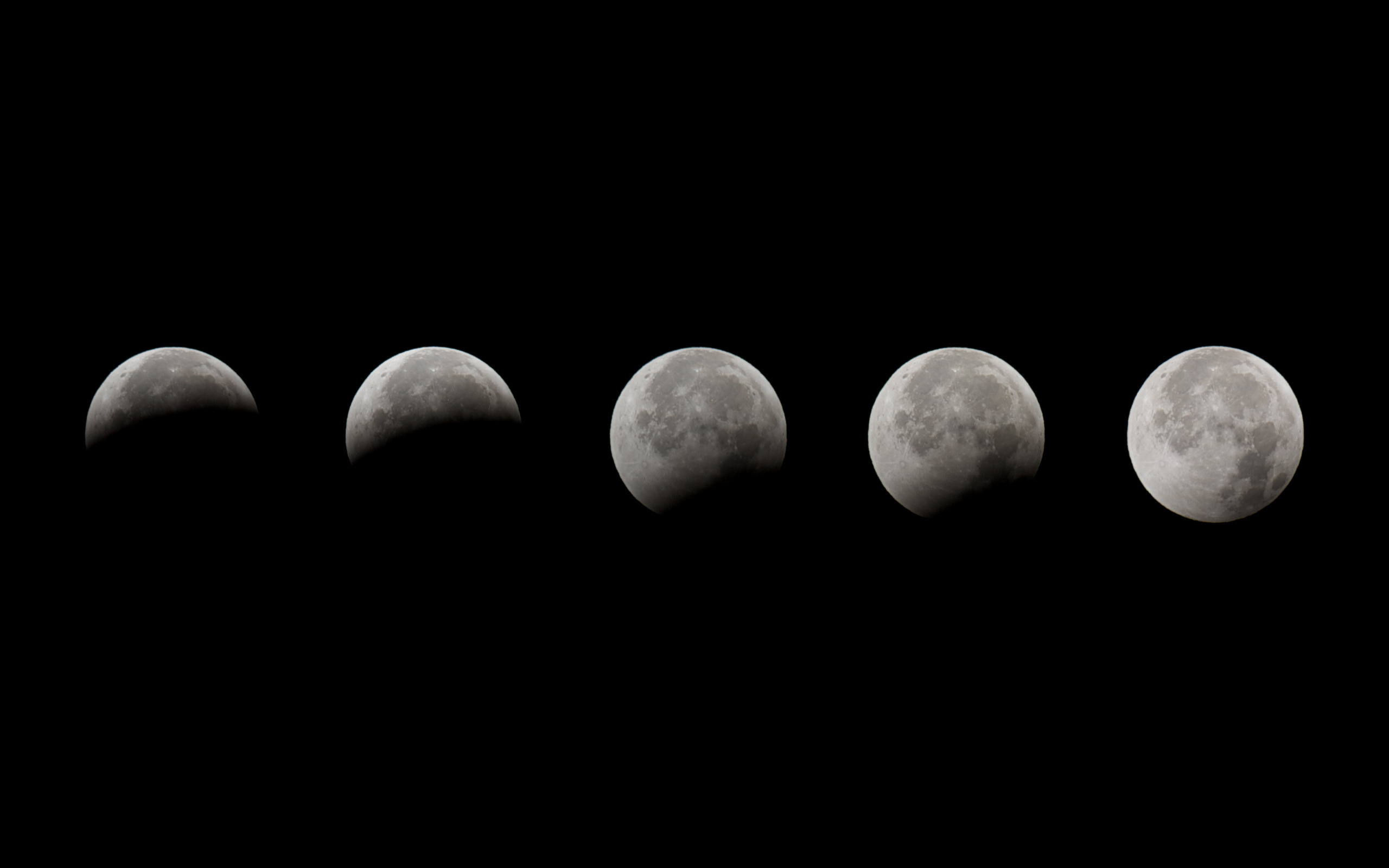 Wallpaper Space, Moon, Night, Lunar Eclipse, Eclipse, Moon Phases