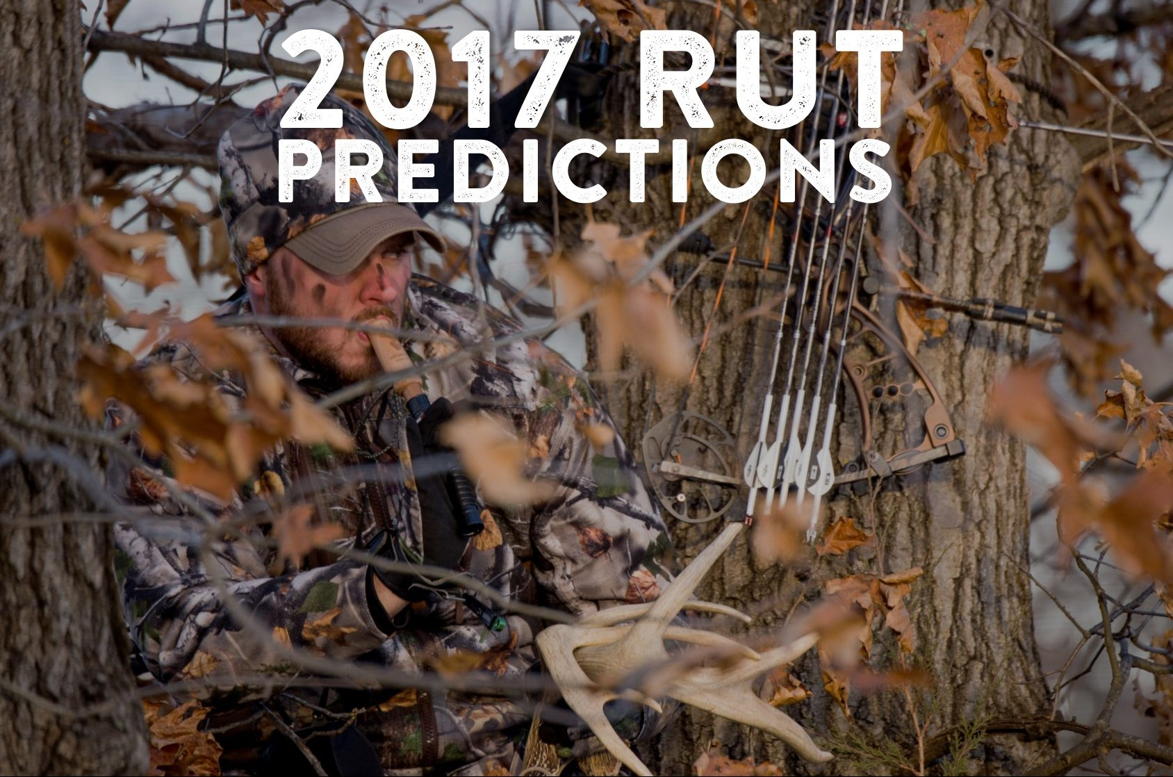 2017 Rut Predictions For Every Theory - Legendary Whitetails