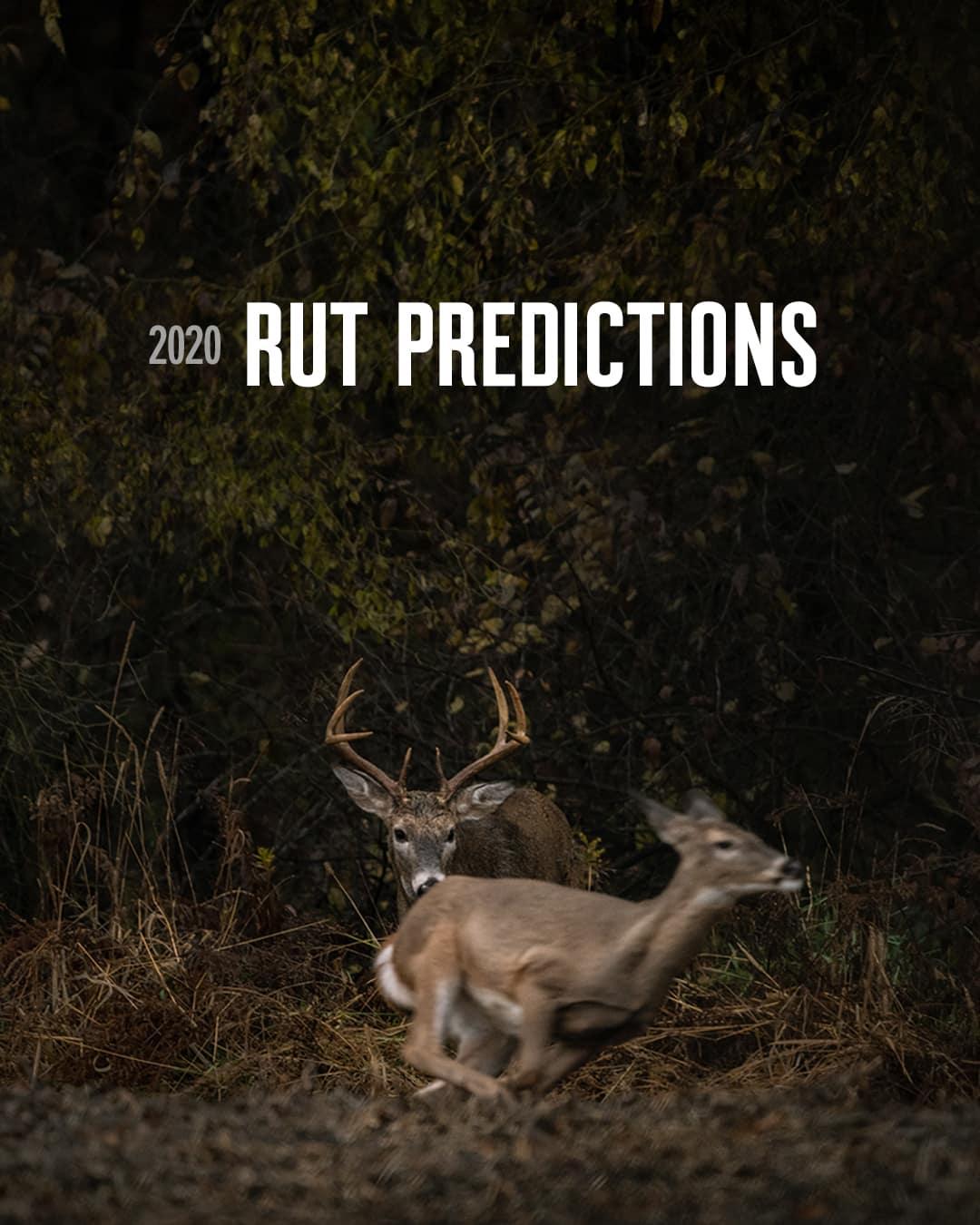 2021 Deer Rut Wisconsin Prediction