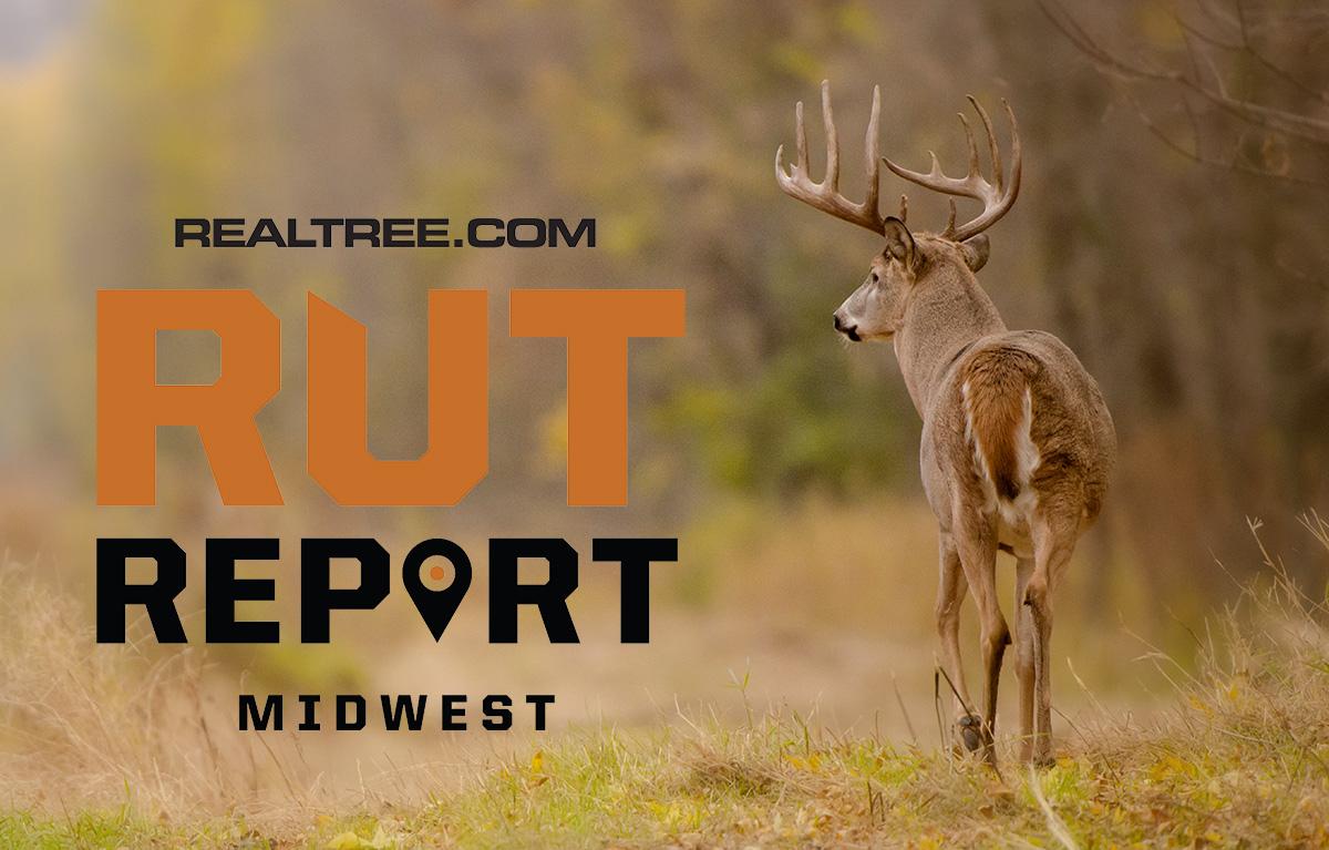 2021 Wisconsin Rut Predictions
