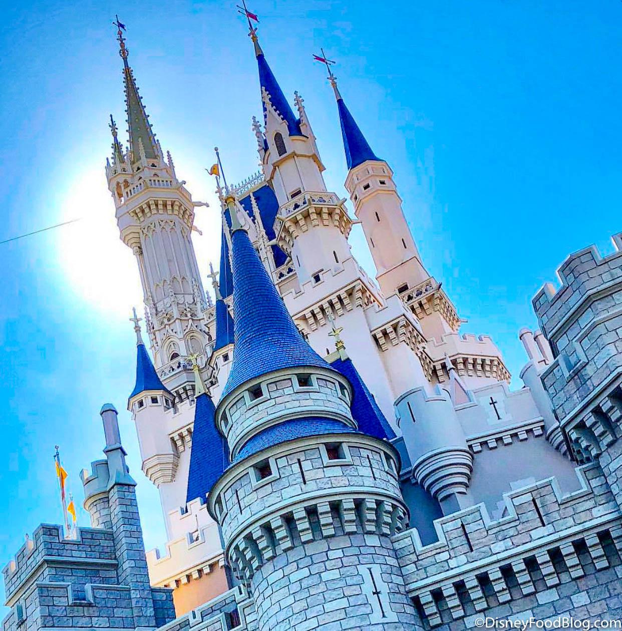Disney 2021 Rides Check List