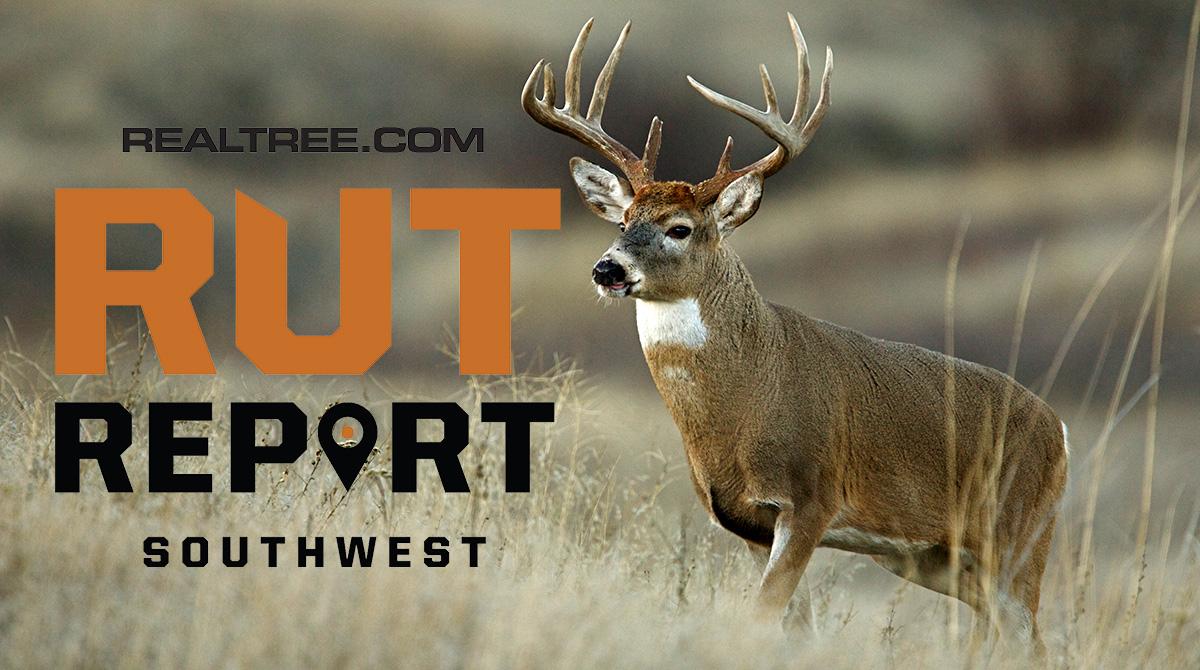 Nov. 29 Southwest Rut Report, 2020
