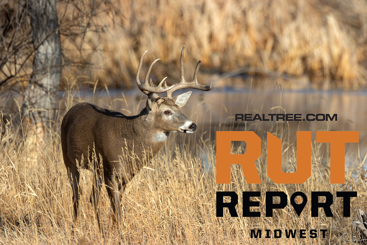 Oct. 22 Midwest Rut Report, 2020