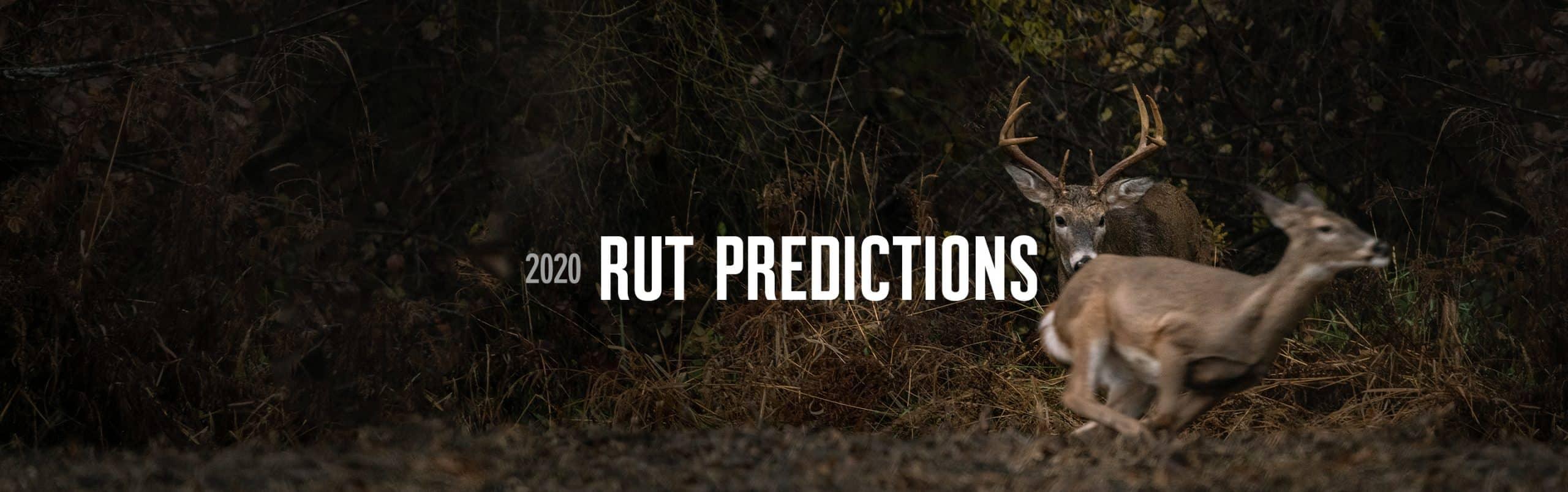 Peak Rut Prediction 2021