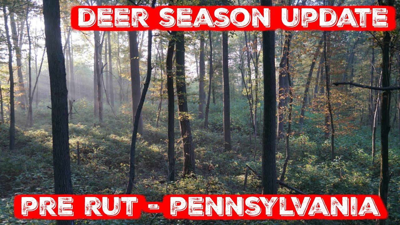 Pennsylvania Deer Season Update - Late October (Pre Rut)