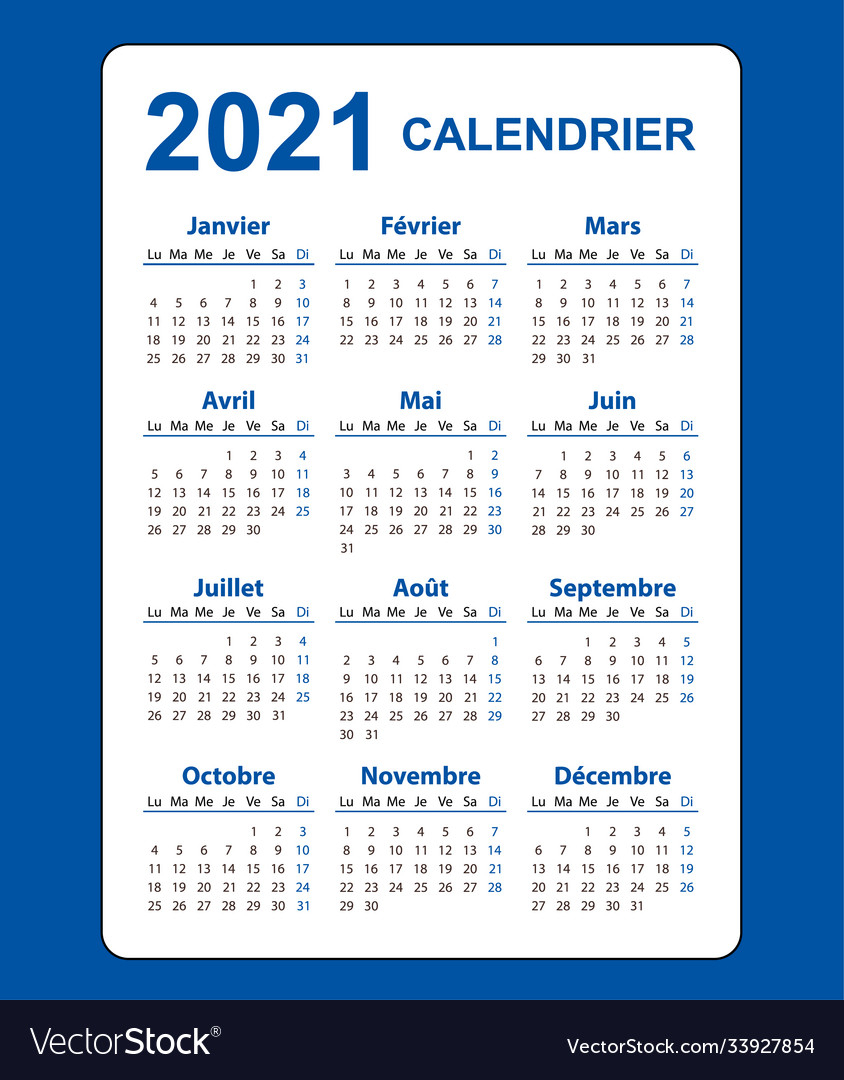Vertical Color Pocket Calendar On 2021 Year Vector Image