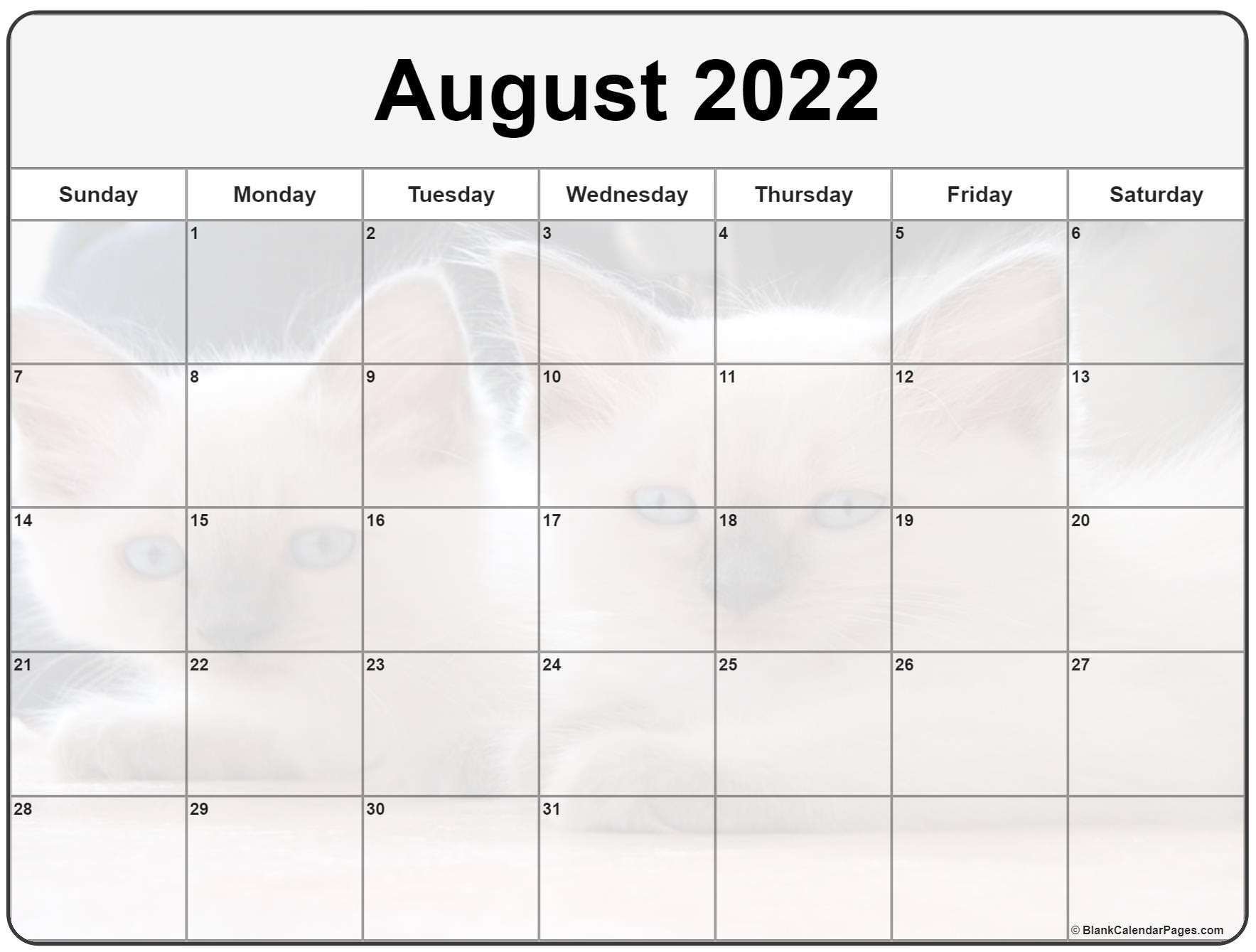 Collection Of August 2022 Photo Calendars With Image Filters.