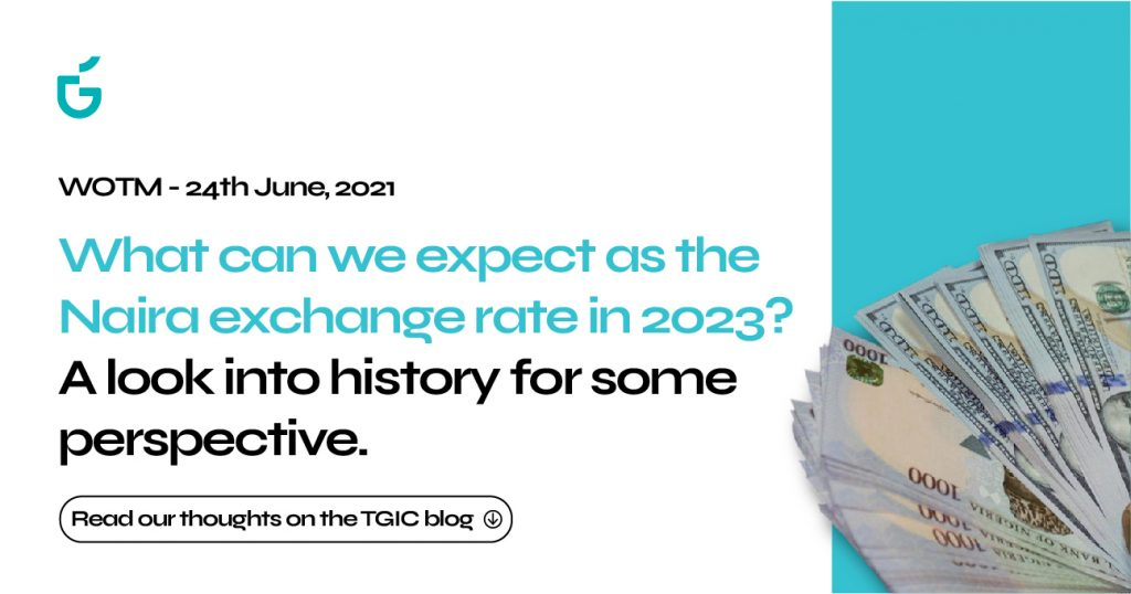 What Can We Expect As The Naira/Exchange Rate In 2023? - Tgic